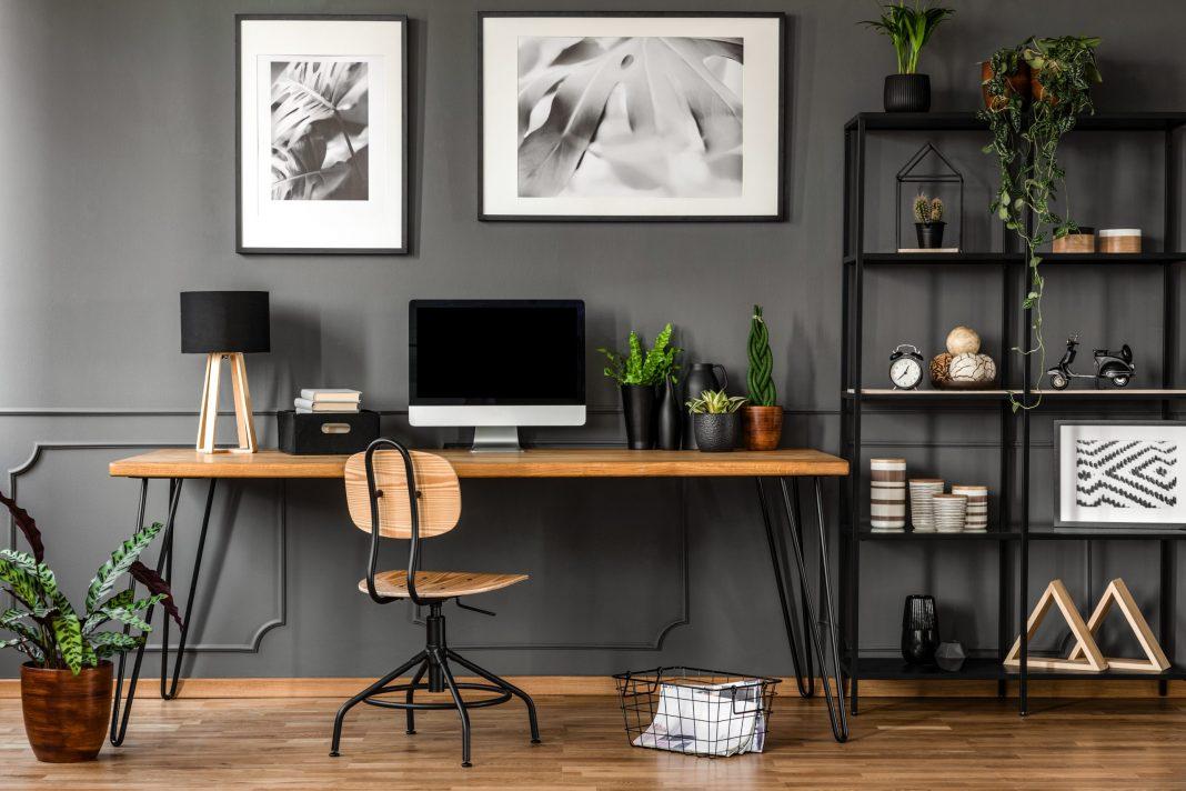 Fundraising im Homeoffice - Blick auf einen Schreibtisch mit Computer, Monitor und einigen Pflanzen neben einem Regal